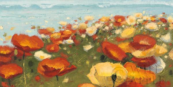 גולש לאופקפרחים, שדה, אביב, אביבי, צבעוני, פריחה , ציור, פרח, ים, אופק