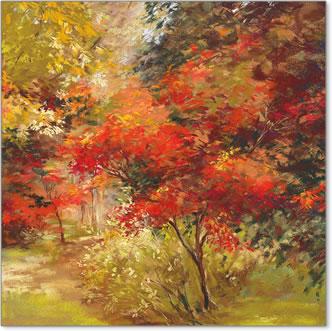 כל העולם לוחשעצים , נוף, כתום, צהוב, סתיו, אווירה, שלכת, יער, חורשה,