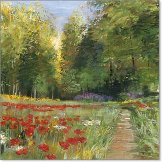 שדה פרחיםיער כלניות חרציות שביל נוף עצים