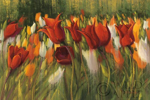 פרחים, שדה, אביב, אביבי, צבעוני, צבעוני, פרח, צבעים, ציור, נוף