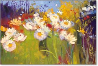 אחו עכשוויפרחים, שדה, כלניות, אביב, פריחה, אחו, שמים ,טבע