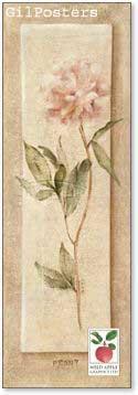 פרח רומנטירומנטי עיצוב מודרני מינמליסטי טבע גבעול נקי צח אסטטי ורוד ורד