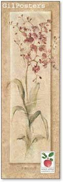 פרחים רומנטייםרומנטי עיצוב מודרני מינמליסטי טבע גבעול נקי צח אסטטי ורוד ורד