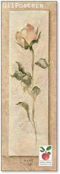 רומנטיקהרומנטי עיצוב מודרני מינמליסטי טבע גבעול נקי צח אסטטי ורוד ורד