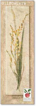 פריחהרומנטי עיצוב מודרני מינמליסטי טבע גבעול נקי צח אסטטי צהוב