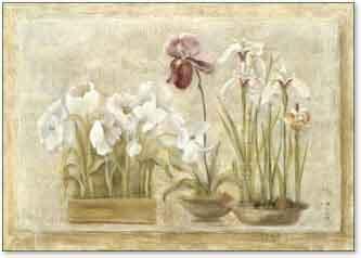 פרחים לבנים בחלוןפרחים רומנטי מודרני דקורטיבי יופי עיצוב דקורציה