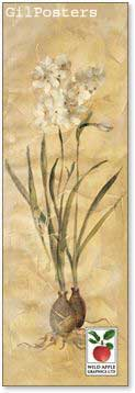 פרחים עם בצליםרומנטי עיצוב מודרני מינמליסטי טבע גבעול נקי צח אסטטי שורש