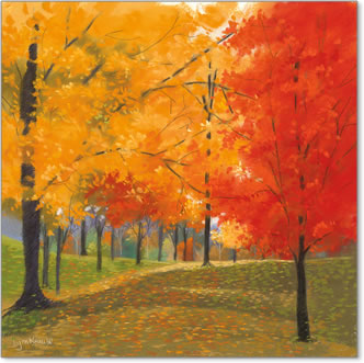 יום סתווי מוארעצים , נוף, כתום, צהוב, סתיו, אווירה, שלכת, יער, חורשה,