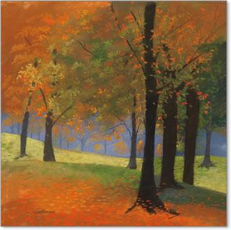עצים , נוף, כתום, צהוב, סתיו, אווירה, שלכת, יער, חורשה,
