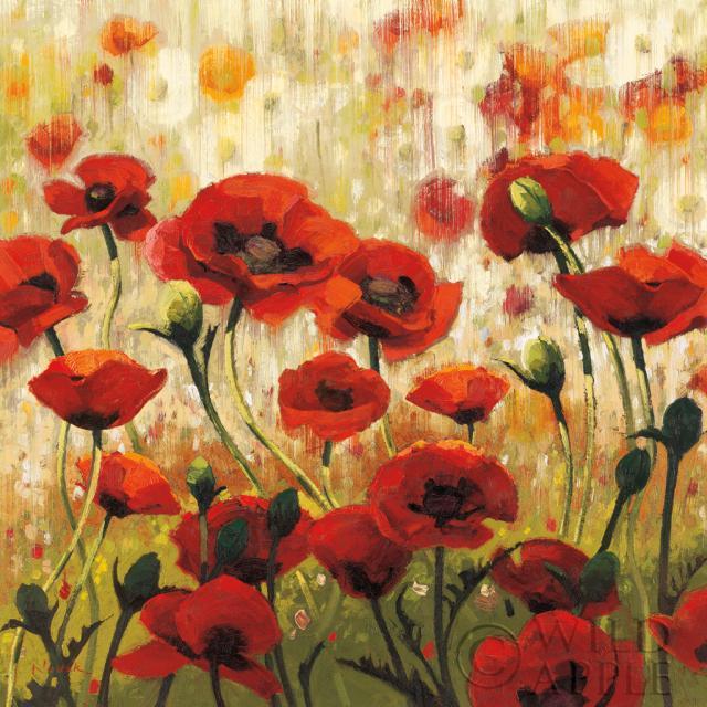 מקהלה שמשית ואביביתבוטני, פרחוני, פרחים, פרח,זהב, ירוק, פרגים, פרג, אביב, אביבי, שמש,שמשי, צהוב