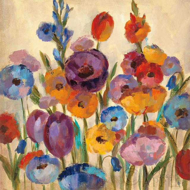 גווני  הגןפרחים, צבעים, גוונים, אביב, שדה, פרחים