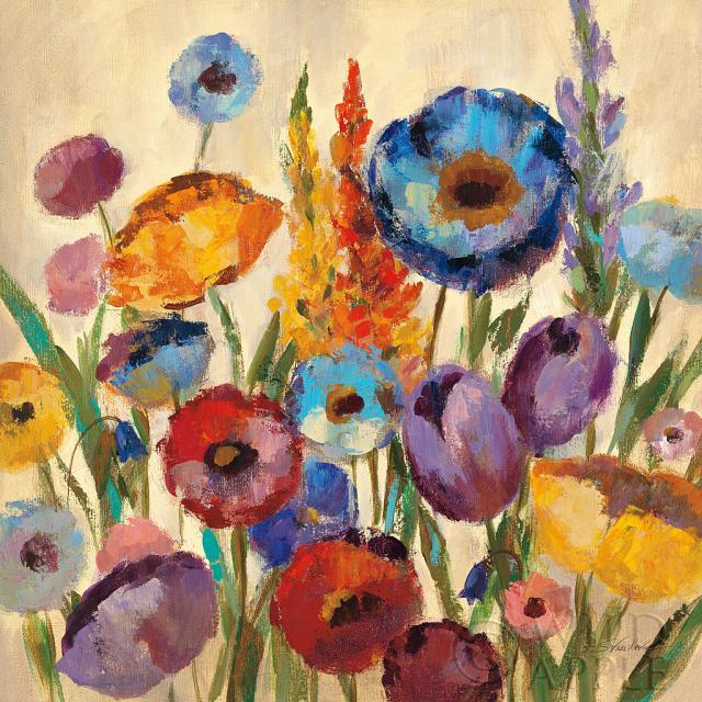 פרחים, צבעים, גוונים, אביב, שדה, פרחים