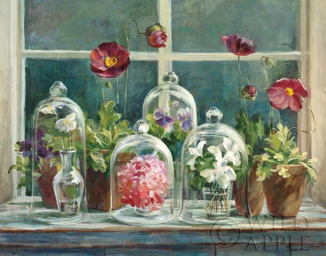 פרגים סגולים באדן החלוןבוטני, פרחים, פרח, פרחוני, גינה, עציצים, ירוק, חממה, ורוד, פרגים, פרג, אדניות, אדום, חלון, אדן חלון