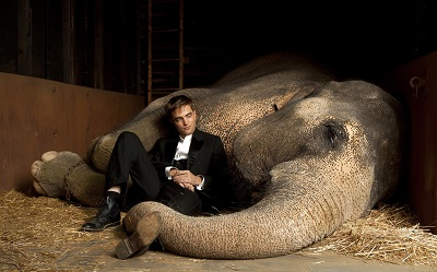 מים לפילים,רוברט פטינסון Water for Elephants- תמונה על קנבס,מוכנה לתליה.מים לפילים,רוברט פטינסון Water for Elephants