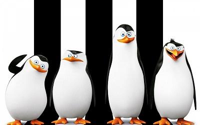 פיגווינים  penguins of madagascar   - תמונה על קנבס,מוכנה לתליה.פיגווינים  penguins of madagascar אנימציה