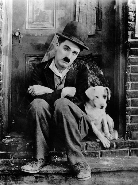 צארלי צפלין  -   A DOG'S LIFE- תמונה על קנבס,מוכנה לתליה.סרטים ישנים  צארלי צפלין  - צרלי צפלין  -   A DOG'S LIFE
