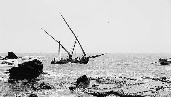 יפו סירות - תמונה על קנבס, מוכנה לתלייהיפו סירות